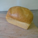 Wit brood_